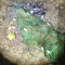 Sirmione BS, Guardie ANPANA e Polizia Locale sequestrano 60 metri di reti per pesca di frodo