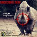 Specie a rischio: il Rinoceronte Nero