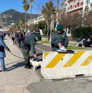 Anagrafe canina regionale informatizzata (ACIR) - Giornata di controlli a Salerno