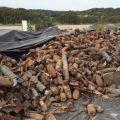 La discarica delle bombe Nato, le precauzioni per la pulizia di Capo Frasca