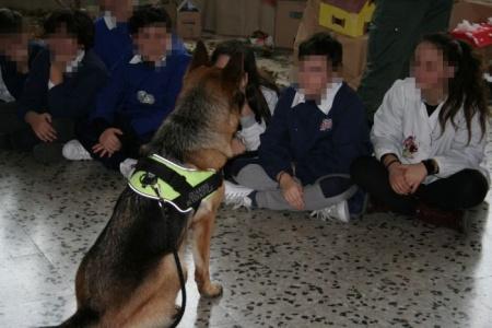 Altamura - A scuola con i cani