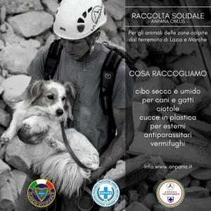 #terremoto - ANPANA Frosinone raccoglie beni per animali terremotati