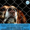 #NoAbbandono e #InVacanzaCon - la campagna estiva Anpana Onlus si fa in due