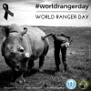 #WorldRangerDay | Oggi il mondo ricorda i ranger caduti per difendere l'ambiente